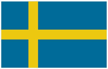 vector illustration of Sweden flag