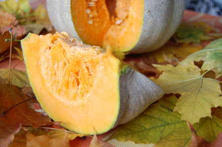 Pumpkin and pumpkin slice horizontal Stock Photo