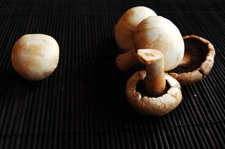 Mushrooms on dark background
