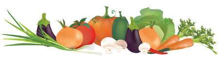 Collection of 3D vegetables. Carrot, Chili Peppers, Tomato, Cabbage, Eggplant, Pumpkin, Onion and Mushrooms