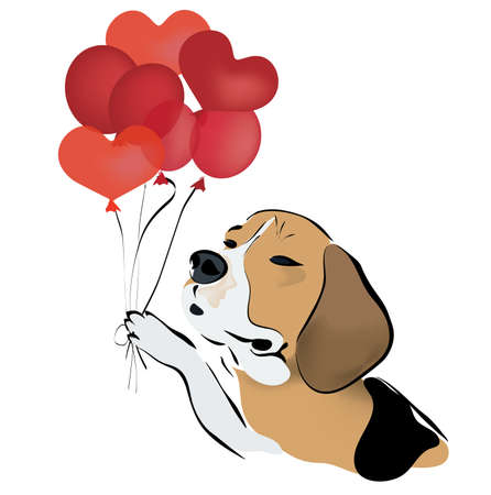 red balloons: Beagle Dog with Red Heart Shaped Balloons