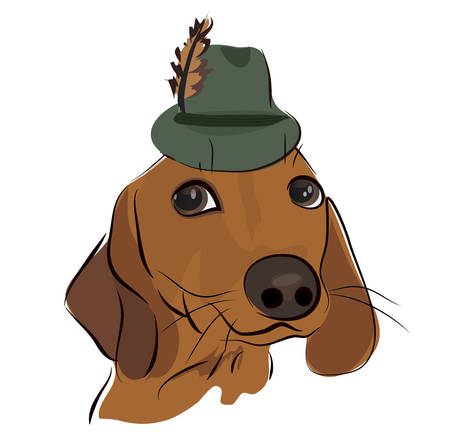 hat with feather: Cute Dachshund Dog with a Hat with Feather Illustration