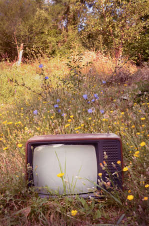 Retro Design TV on a Meadow Stock Photo