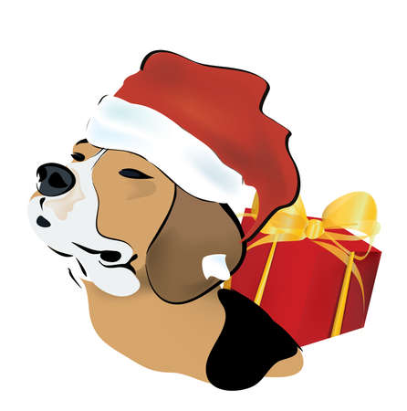 Christmas Gift with a  Beagle Dog with Santa Claus Hat