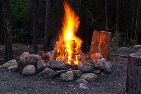 alight: Photo of Camp fire in the summer night