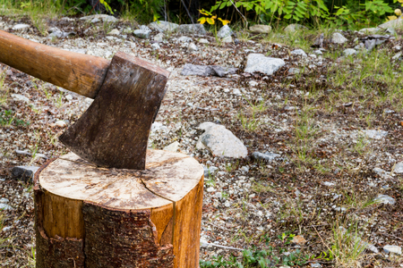filings: Photo of old blunt axe on log