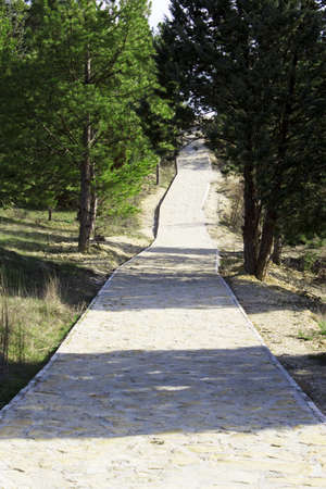 path cottage garden: A woodsy walkway in a forested area Stock Photo