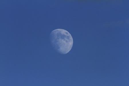 Mond Lizenzfreie Bilder