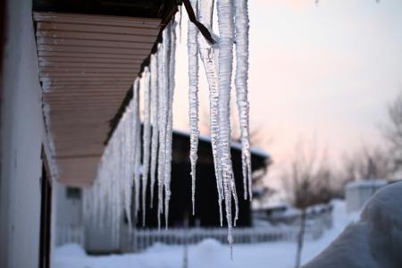 Frost Lizenzfreie Bilder