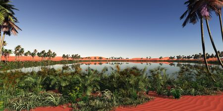an oasis: oasis panoramic in desert