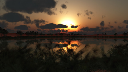 sunset over oasis