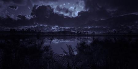 oasis in desert Stock Photo