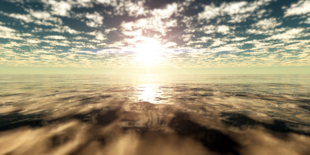 clam sea sunset gold