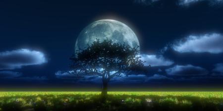 Big tree against the night full moon Stock Photo