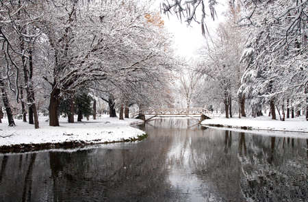 Snow in the Park, winter park in snow Stock Photo