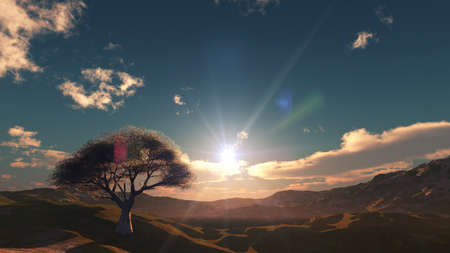 sunset at meadow and lonely tree, 3d render illustration