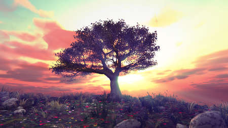 tree spring in meadow sunset illustration, 3d rendering