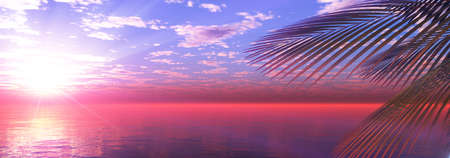 sunset sea palm landscape illustration, 3d render Standard-Bild