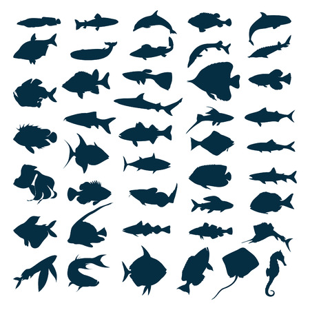 Silhouettes of sea and lake fishes. A vector illustration Vector