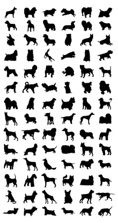 Black silhouettes of different breeds of dog. A vector illustration Illustration