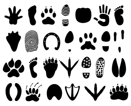 trace: Traces of the person and animals.  illustration