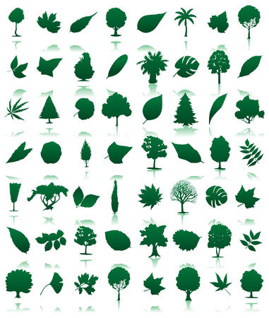 Collection of icons of trees and leaves. illustration Illustration