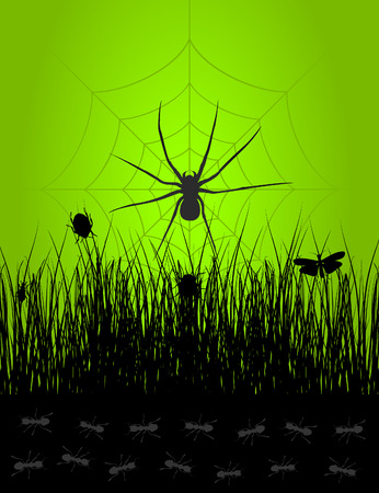 Sketch from a life of insects. A Vector illustration Stock Vector - 8556601