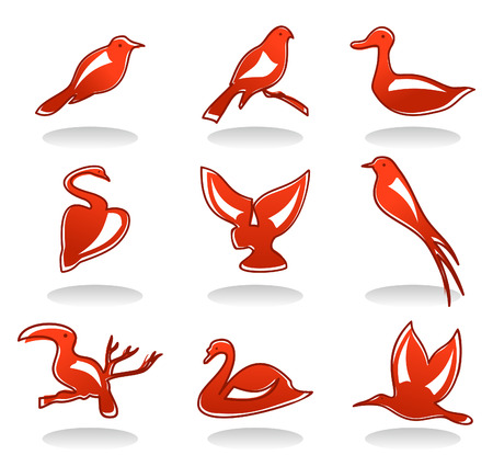 Set of icons on a theme of a bird. A Vector illustration Vector