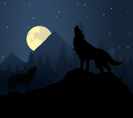 black wolf: Wild animal with burning eyes in night darkness.