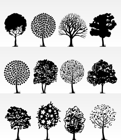 crone: Silhouettes of trees on a white background. A vector illustration