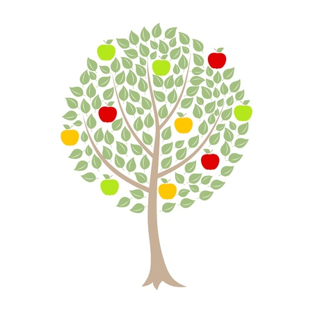 Apple-tree with apples on a white background Vector
