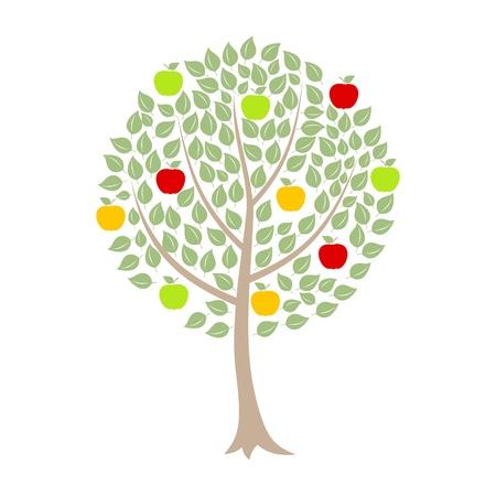 arboles de caricatura: �rbol de manzanas con manzanas sobre un fondo blanco