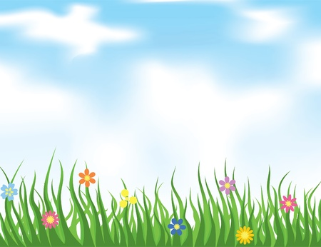 sod: Grass on a meadow and the blue sky. A vector illustration