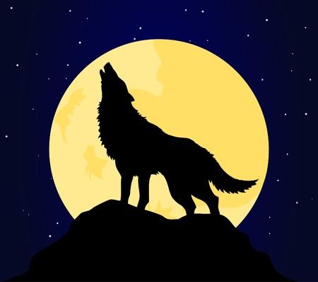 luna caricatura: El lobo aullidos en la Luna en la noche. Una ilustraci�n vectorial