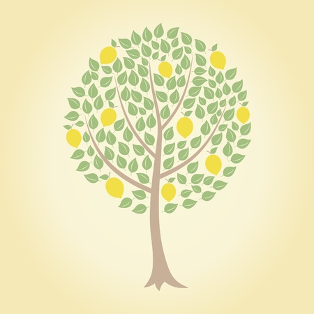 Tree and yellow lemons on it. A vector illustration Vector