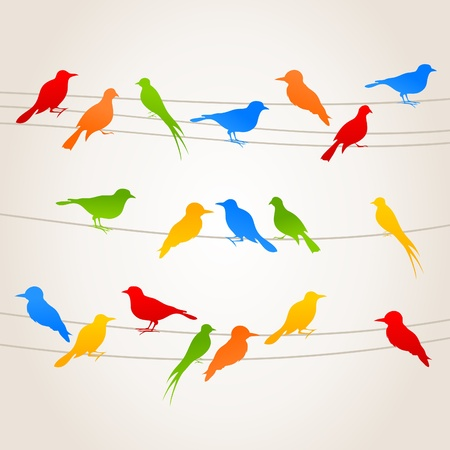 Birds sit on wires