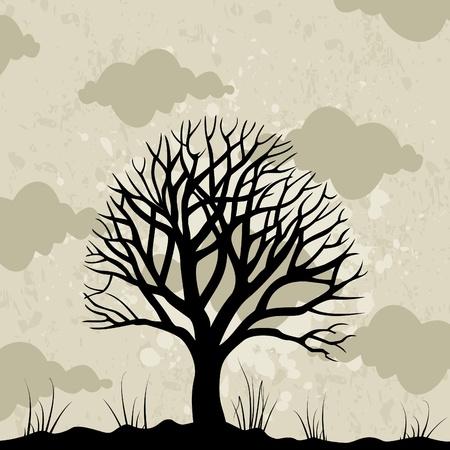 aspen: Old tree against the grey sky.   Illustration