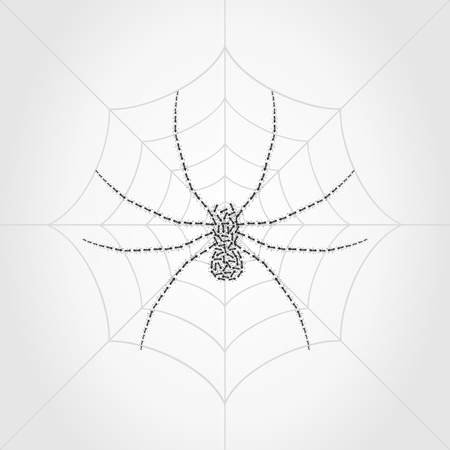 loathsome: Spider on a web collected from ants. A vector illustration