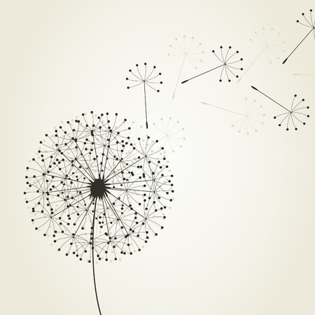 From a dandelion seeds fly. An illustration Illustration