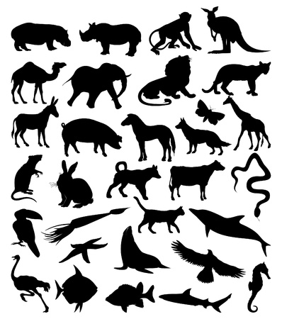 Collection of silhouettes of animals from all continents. Vector