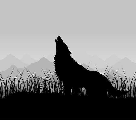 The wolf howls in mountains in a fog.  Illustration
