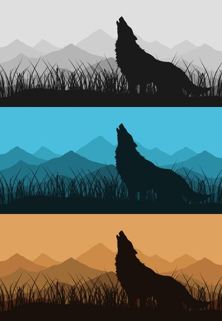 The wolf howls against mountain. A vector illustration Illustration