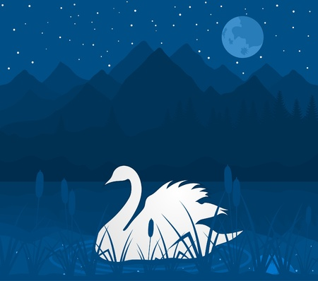 headwaters: White swan on lake in mountains. A vector illustration