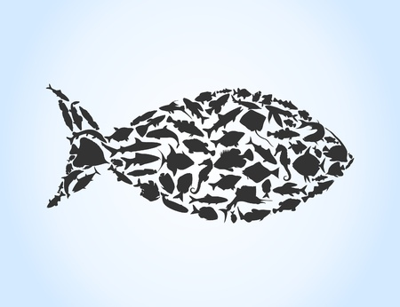Fish collected from small fishes. A vector illustration Illustration