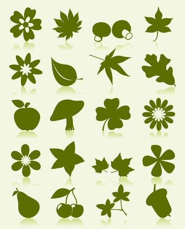 Icons of plants of green colour. A vector illustration Vector