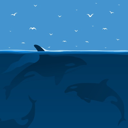 Whales hunt in the sea  A vector illustration Vector