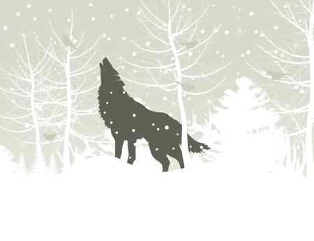 lobo: Los aullidos de lobos en invierno en el bosque Una ilustración vectorial