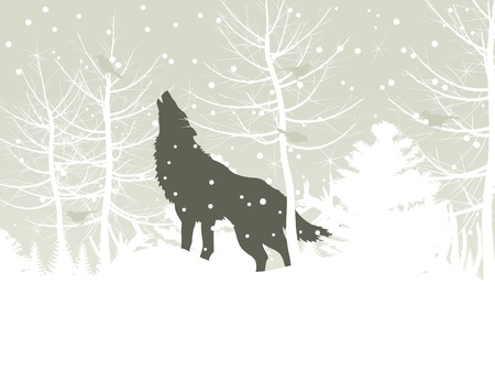The wolf howls in winter wood  A vector illustration