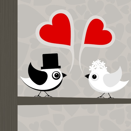 Birds love each other. A vector illustration Vector