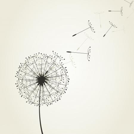 blowing dandelion: Da un dente di leone semi di volare. Una illustrazione vettoriale